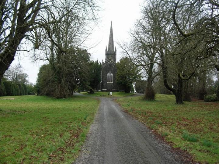 Ireland_osin